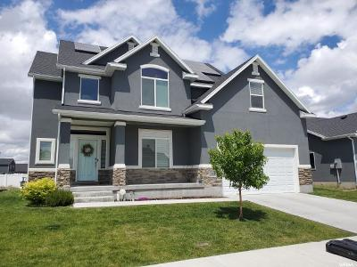 Layton Single Family Home For Sale: 2394 W Harmony Dr S
