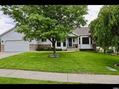 American Fork Single Family Home For Sale: 742 N 540 W