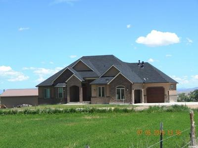 Emery County Single Family Home For Sale: 885 S Flat Road
