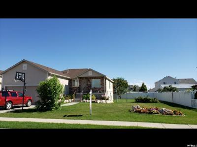 Roy Single Family Home For Sale: 4161 W 5850 S
