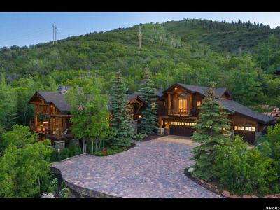 Park City Single Family Home For Sale: 2145 Bear Hollow Dr