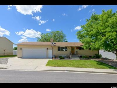 Payson Single Family Home Under Contract: 743 N Tomahawk Dr