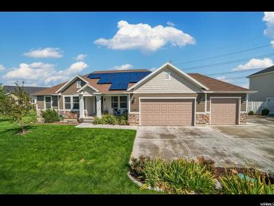 Saratoga Springs Single Family Home For Sale: 1508 S Lakeview Terrace Rd