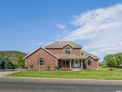 Elk Ridge Single Family Home For Sale: 375 N Elk Ridge Dr
