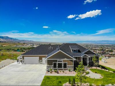 Herriman Single Family Home For Sale: 7072 W Echo Bluff Cir S #808