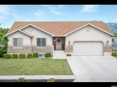 Single Family Home For Sale: 135 S 400 W