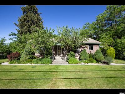 Provo Single Family Home For Sale: 2585 N Timpview Dr