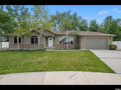 Midvale Single Family Home For Sale: 8629 Brit Cir