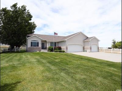 Tooele County Single Family Home Backup: 652 S Hale St