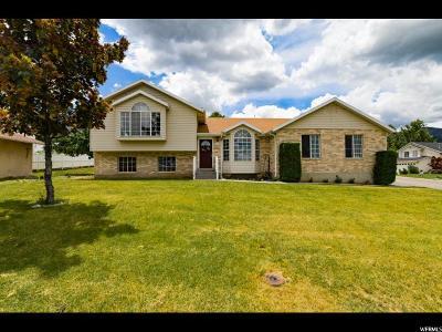 Elk Ridge Single Family Home Backup: 160 E Park Dr