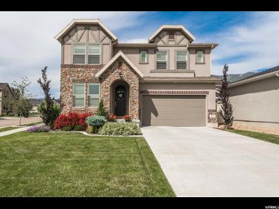 Fruit Heights Single Family Home For Sale: 869 S Cherry Plum Ln
