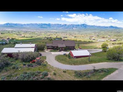 Park City Single Family Home For Sale: 1080 Tollgate Rd