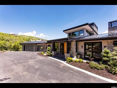Park City Single Family Home Under Contract: 1360 Snow Berry St