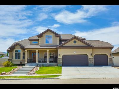 Riverton Single Family Home For Sale: 13534 S Wild Brook Dr