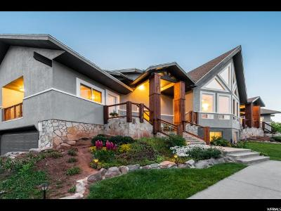 Park City Single Family Home For Sale: 7369 Stagecoach Dr