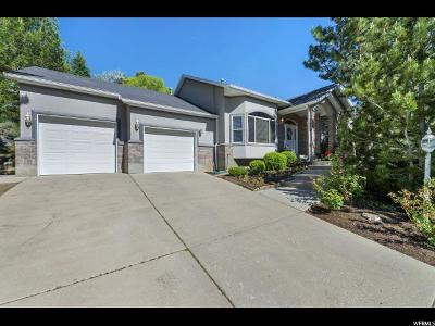 Sandy Single Family Home For Sale: 10165 S Majestic Canyon Rd E