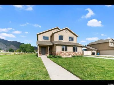 Springville Single Family Home For Sale: 73 S 1100 W