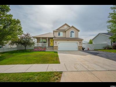 Layton Single Family Home Under Contract: 1041 N 3575 W