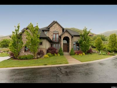 Fruit Heights Single Family Home For Sale: 1778 View Ct
