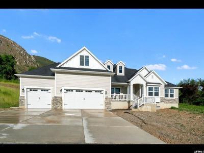 Springville Single Family Home For Sale: 588 N 800 E