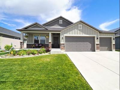 Layton Single Family Home Under Contract: 2414 W 525 S