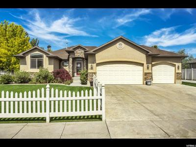 Farr West Single Family Home Under Contract: 3543 N Remuda Dr