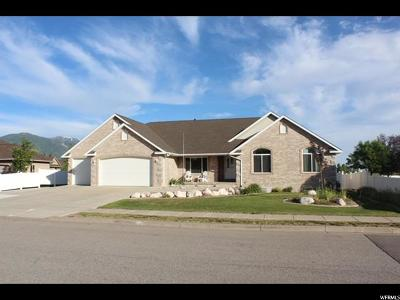 Kaysville Single Family Home For Sale: 827 W Charles Dr S
