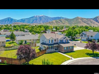 Payson Single Family Home Under Contract: 963 S 1040 W