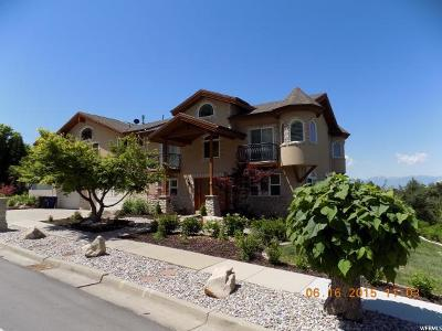 Cottonwood Heights Single Family Home For Sale: 8504 Kings Hill Dr
