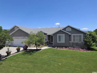 Riverton Single Family Home For Sale: 13213 S Sweet Caroline Dr