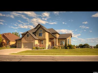 Syracuse Single Family Home For Sale: 3673 W Augusta Dr S