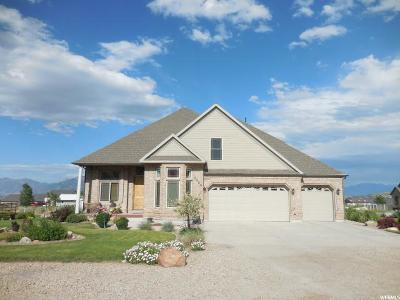Herriman Single Family Home For Sale: 7118 W Gina Rd