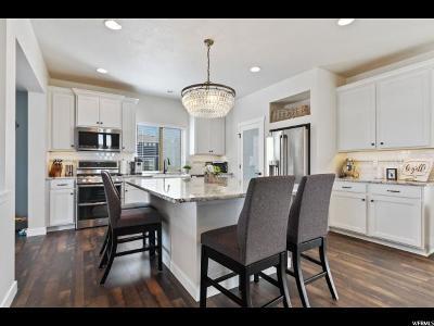 American Fork Single Family Home For Sale: 732 E 380 S