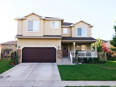 Cedar Hills Single Family Home For Sale: 4048 W Valderrama N