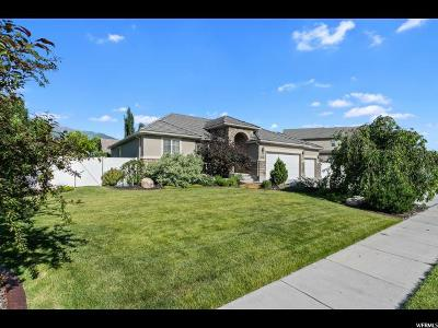 Kaysville Single Family Home Under Contract: 773 Wind Mill Ln