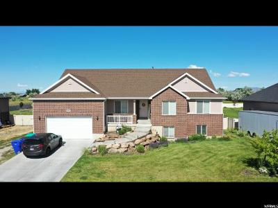 West Point Single Family Home For Sale: 1655 N 4700 W