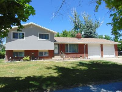 Syracuse Single Family Home For Sale: 1184 W 1290 S