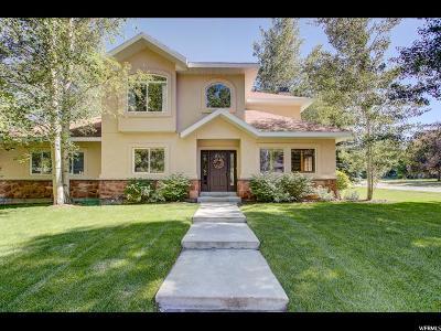Park City Single Family Home For Sale: 1444 Rio Grande Rd