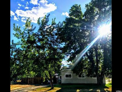 Lehi Single Family Home For Sale: 394 E 600 N