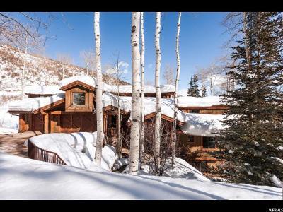 Park City Single Family Home For Sale: 2465 Bear Hollow Dr