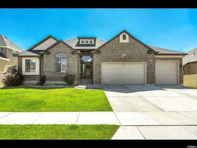 Lehi Single Family Home Under Contract: 3263 N Alpine Vista Way