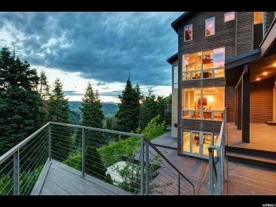 Park City Single Family Home For Sale: 7100 Canyon Dr