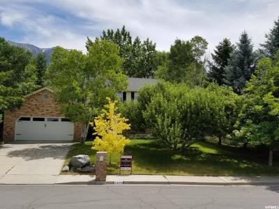 Provo Single Family Home For Sale: 3886 N 100 E