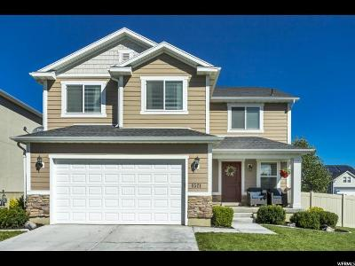 Saratoga Springs Single Family Home Backup: 1521 S Lake View Terrace Rd