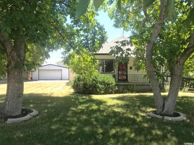 Orem Single Family Home Under Contract: 130 E 1200 N