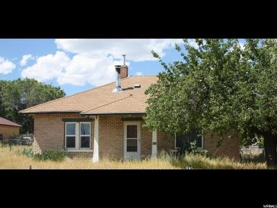 Ferron Single Family Home For Sale: 410 W 100 N