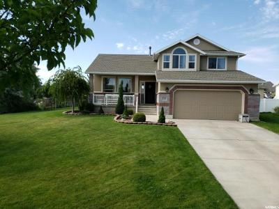 Syracuse Single Family Home For Sale: 3705 W Augusta Dr S