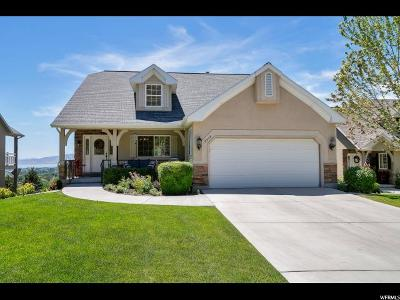 Cedar Hills Single Family Home Under Contract: 8939 N Cottage Canyon Dr