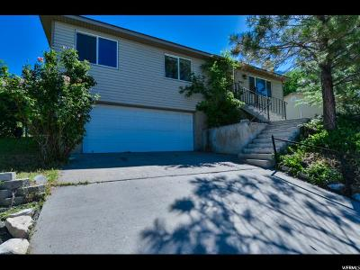 Provo Single Family Home For Sale: 1991 Park St