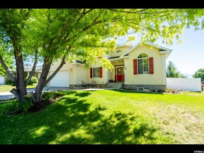 Saratoga Springs Single Family Home Under Contract: 1052 S Emerald Ct